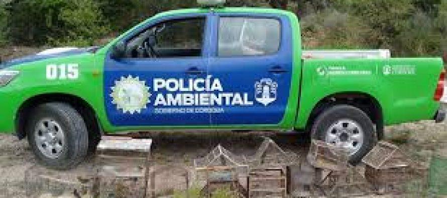 La Policía Ambiental secuestra mayormente aves en la provincia