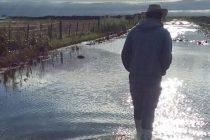 Mañana se reunirán productores agropecuarios en el CeCIP