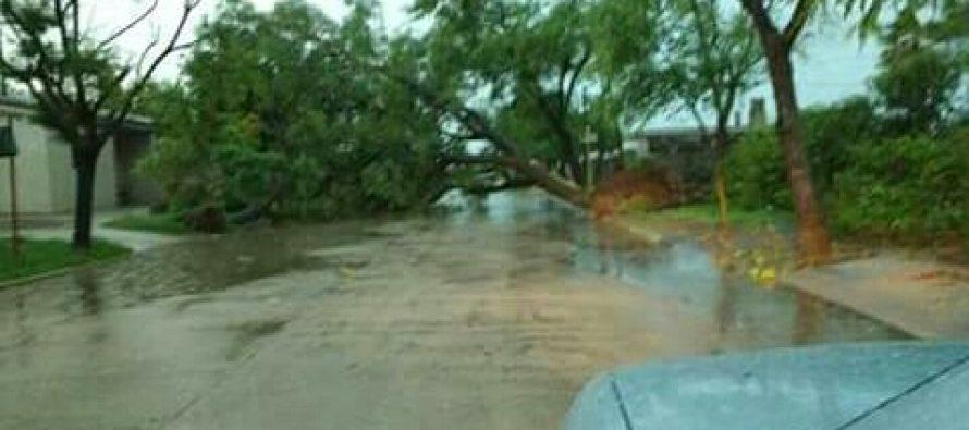 Un tornado provocó serios daños en San Bartolomé