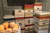 Mas detalles sobre el desbaratamiento de banda de ladrones de quesos