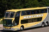 Habría cuatro empresas interesadas en ocupar el corredor  de  Merco Bus-Plus Ultra