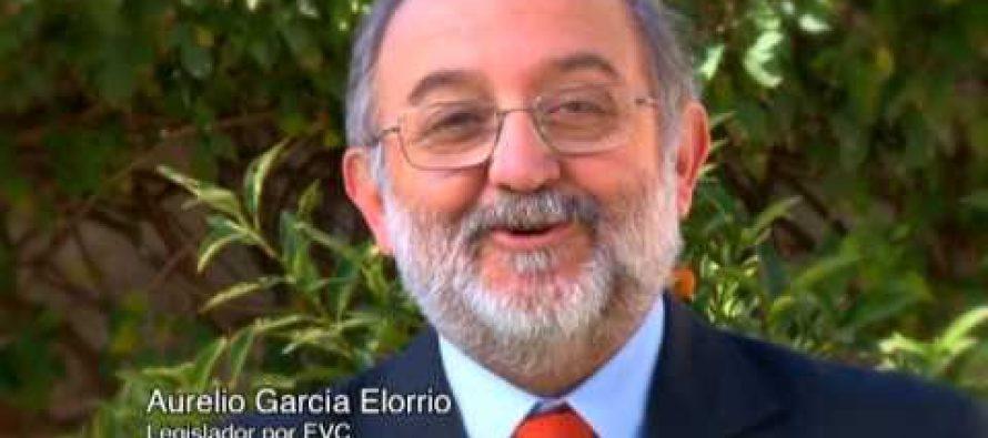 Para García Elorrio las PASO no deberían existir