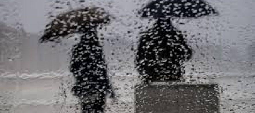 Llovió en toda la región