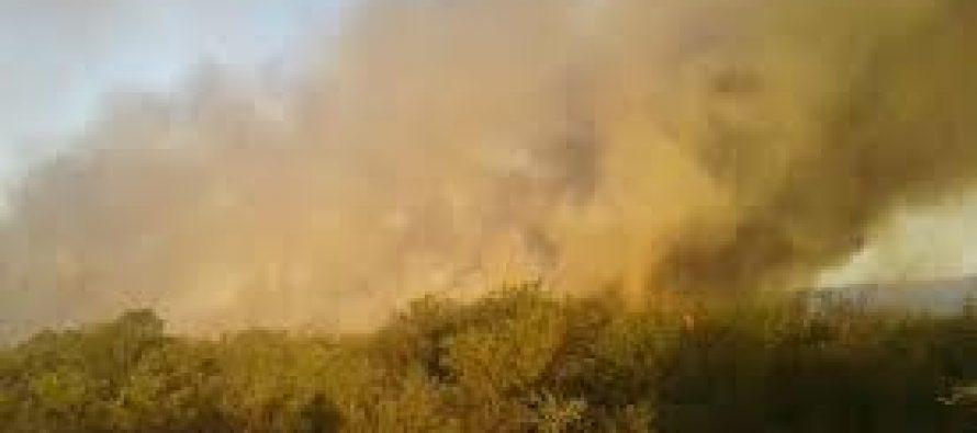 Bomberos de Las Varillas se suman al combate de incendios forestales
