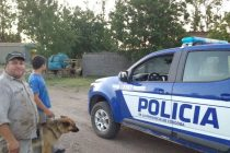 Policiales: Peleas, accidentes graves y detenciones, lo que dejó el fin de semana