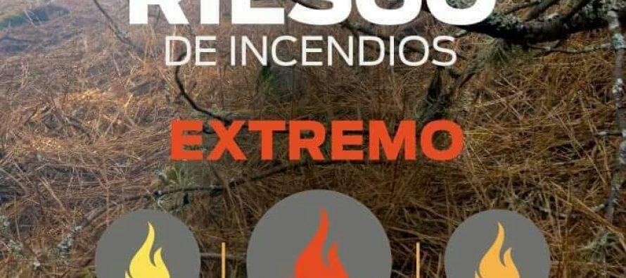 Cinco incendios en 8 días en el Basural Norte