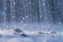 Escasas lluvias en la región