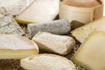 Importante decomiso de quesos en una fábrica de Colonia San Bartolomé
