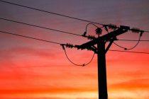 Una sobrecarga de electricidad en la línea dejó sin luz a gran parte de la región