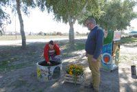 Ambiente entregó árboles, flores y semillas en el Barrio Alfonsín