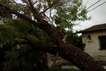 Micro cortes, viento, lluvia y malestar ayer en Las Varillas
