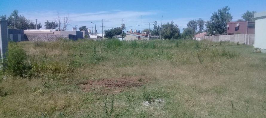 La Municipalidad envió numerosas intimaciones a propietarios de lotes por falta de desmalezado