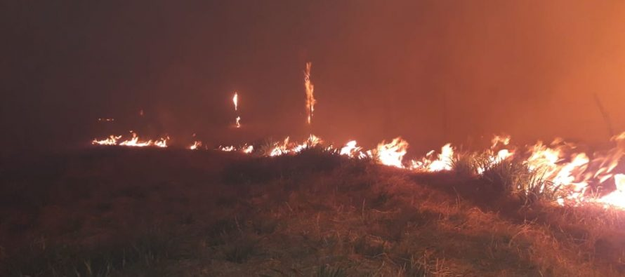 Tres dotaciones de Bomberos combatieron un incendio de campo