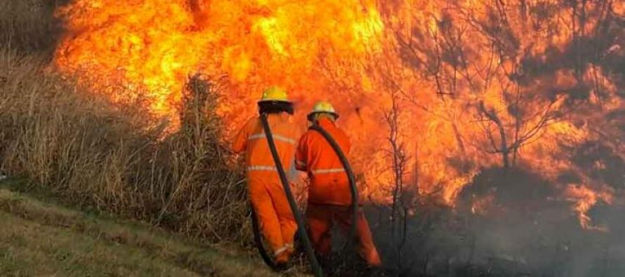 Dos salidas de bomberos esta madrugada por incendio de banquinas