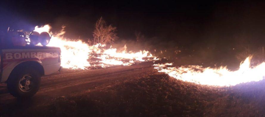 Bomberos controlaron el incendio en un campo en Villa San Esteban