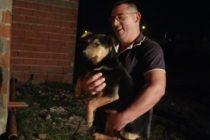 Rescate de un perro y otras actividades de Bomberos de Las Varillas