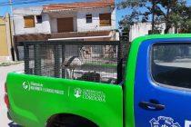 Rescate de un flamenco en cautiverio en Barrio Alfonsín