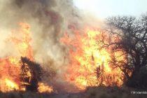 Bomberos de Las Varillas viajaron a Traslasierra por incendios forestales