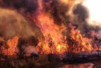 Regresaron los bomberos varillenses que trabajaron en los incendios de Traslasierra