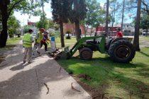 Comenzaron los trabajos de remodelación de la Plaza San Martín