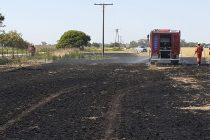 Incendio en zona rural de El Arañado