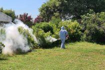 Se detectó un caso de dengue en Las Varillas