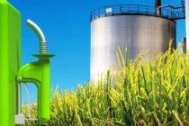 Apuntan a Sergio Massa por la no sanción de la Ley de Biocombustibles