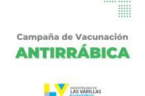 El  sábado arranca la campaña de vacunación antirrábica gratuita de mascotas