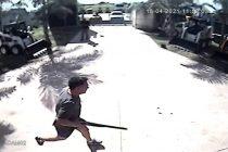 Denunciaron al director del Hospital de Villa del Rosario por matar a un perro en una fábrica (con audio)